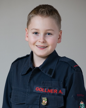 Alexander JFM Gollner